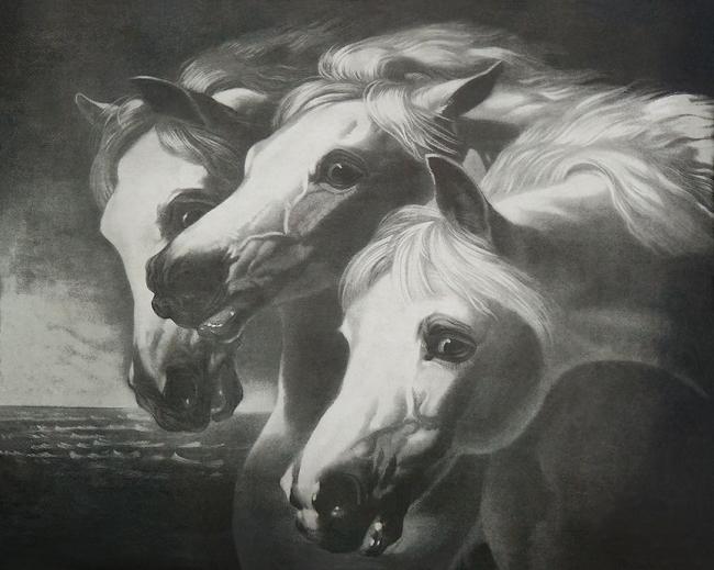 Horsesfinal-lr